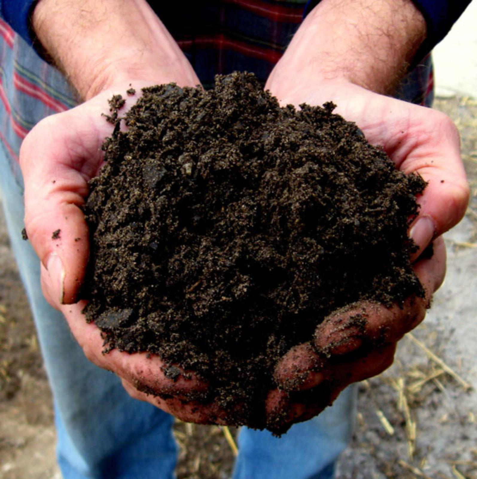 Gardeners Delight - Soil, Kalamazoo, Topsoil, Renewed Earth, Garden, Yard